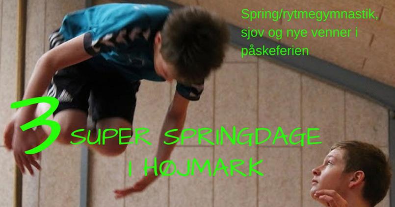 3-super-springdage-2017_880x500
